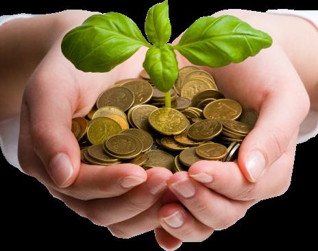 wealth_money_grow